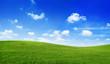 Green field - 63556962