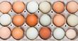 Leinwandbild Motiv Colorful chicken eggs in tray