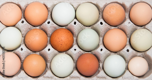 Colorful chicken eggs in tray - 63558386