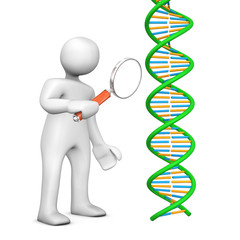 Manikin Loupe DNA
