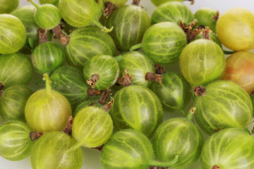 Green gooseberry close-up