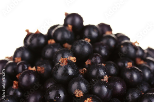 Fresh black currant on white background close-up