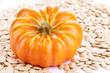 Pumpkin seeds with pumpkin close up