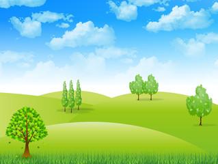 空 新緑 風景
