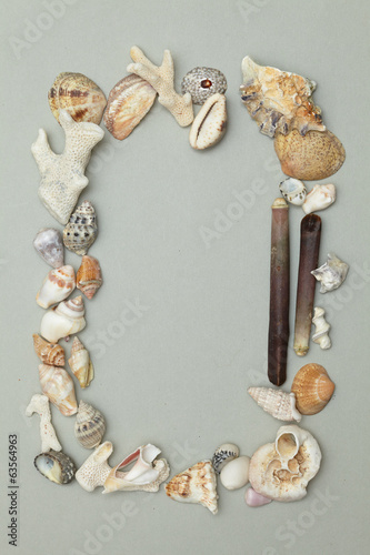 frame made ​​of shells