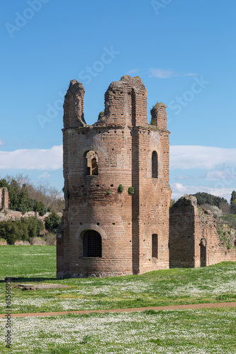 Ruins of the Circus of Maxentius in Rome