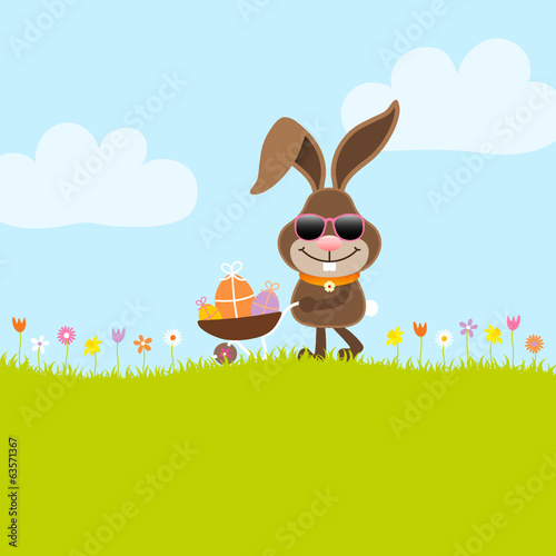 Bunny Sunglasses Barrow Eggs Meadow