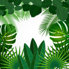 Tropical design background.