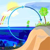 Water cycle in nature poster