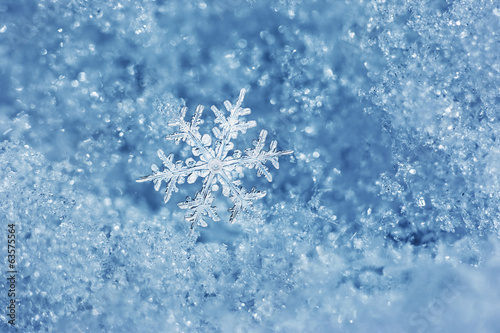 canvas print picture Snowflake Fairytale