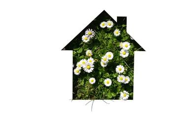 cut out house shape on daisy