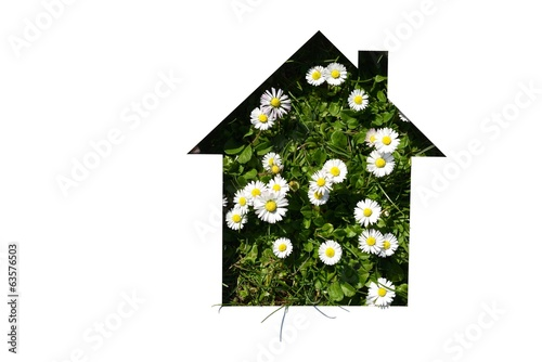 cut out house shape on daisy
