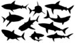 shark silhouettes - 63578725