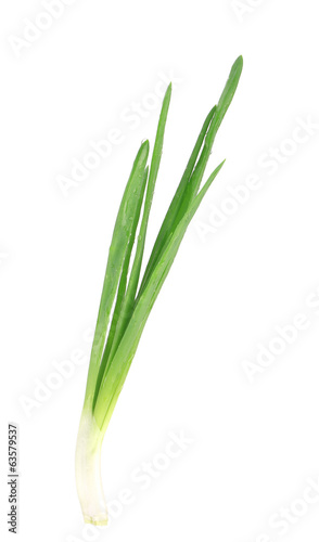 Beautiful spring onions.