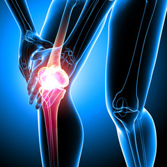 Human knee pain anatomy on blue
