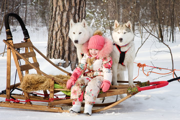 little girl with husky dogs in winter park