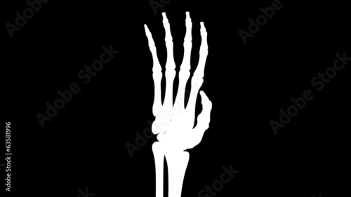Skeletal hand. Looping. Alpha channel included.