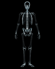 X-ray of human body on black background