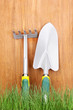 Green grass and garden tools on wooden background
