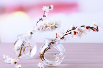 Beautiful apricot blossom in transparent jars