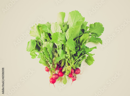 Retro look Radish vegetables
