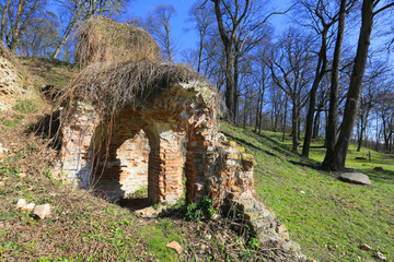 ruin of old house