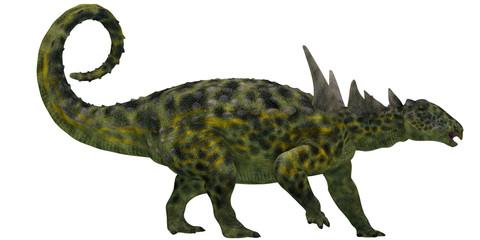 Sauropelta Profile on White