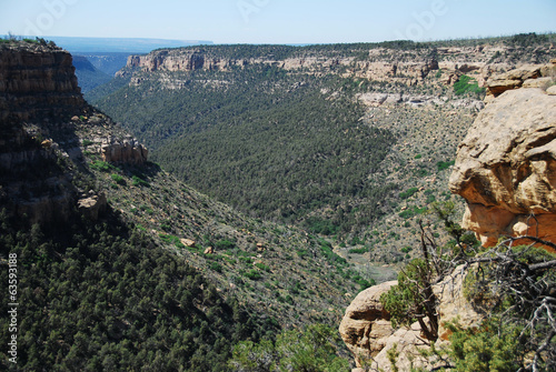 Rock canyon in Mesa Verde National Park, CO, USA