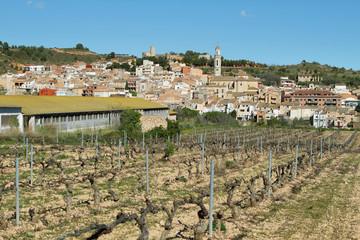 Vila-rodona village
