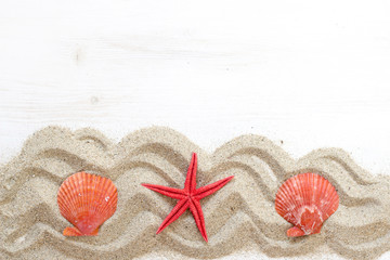 Sea shells ans starfish  - Tropical travel