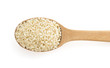 sesame seed in spoon