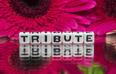 Tribute text with red flowers