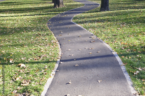 winding jogging path