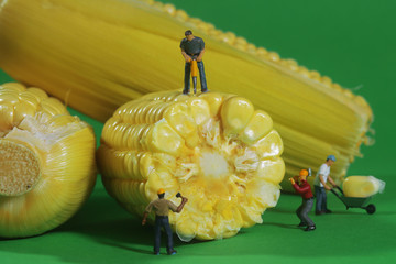 Miniature Construction Workers in Conceptual Food Imagery With C