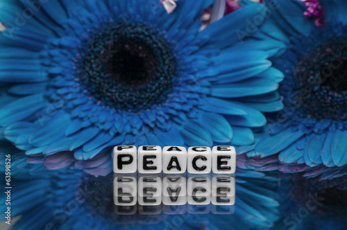 Peace text message with blue flowers