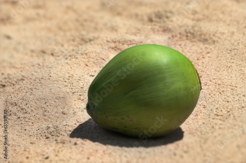 Single young green coconut resting on hot sunny sand