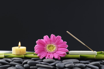 still life with gerbera with candle and grove on pebbles