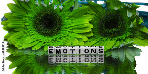 Emotions text with two flowers