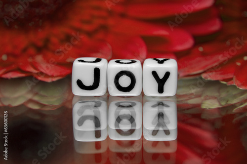 Joy text with red flowers