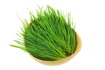 Closeup of freshly cut Wheatgrass in a wooden bowl