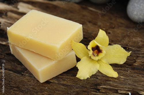 Yellow soap and yellow orchid on Driftwood
