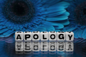 Apology text message with blue flowers