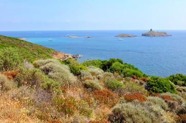 paysage Haute-Corse