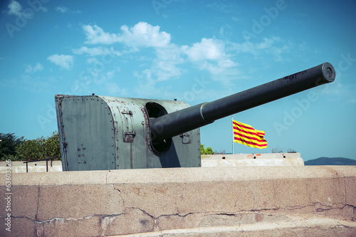 gun on fortresses