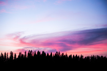 sunset dream sky sweety silhouette row of pine and mountain