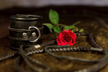 bdsm objekte mit roter rose