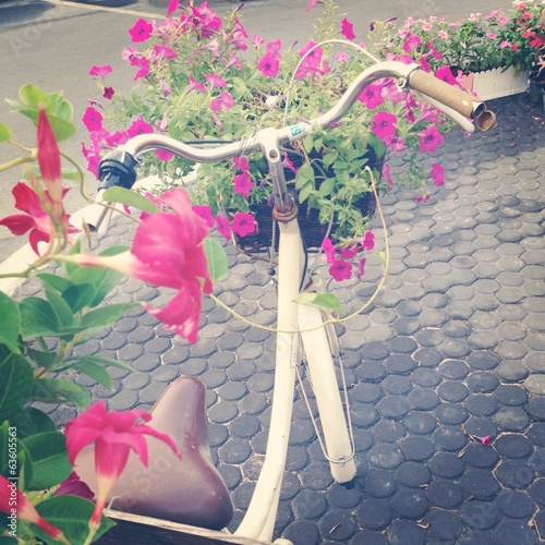 Flowers in basket bike