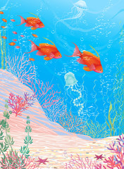Underwater landscape with red fish