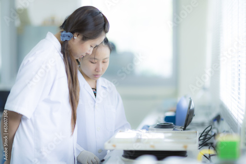 Students working in the Lab Experiment
