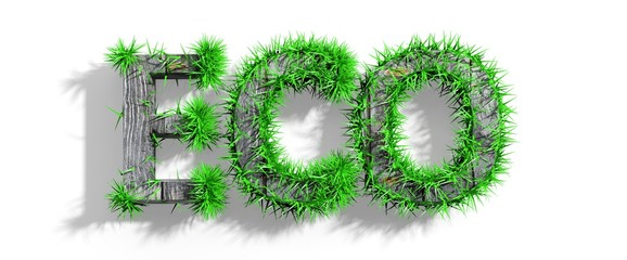 Wooden Eco word with green grass growth isolated